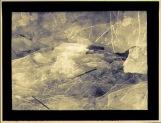 """Ice Floe,"" analogue/digital hybrid photograph"